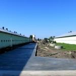 Modernizacja budynku drobiarskiego 3