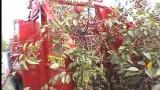FELIX Z – kombajn do zbioru wiśni