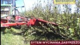 Weremczuk FMR – ROCH – wycinacz pędów porzeczek i aronii